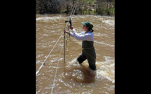 Image of fish biologist taking stream flow measurements