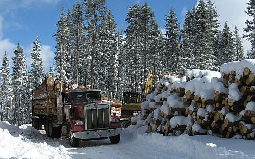 Image of logging truck carrying logs in winter