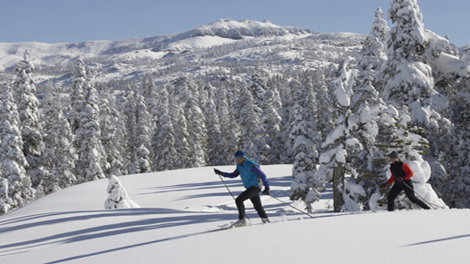 Cross-Country skiers enjoy a beautiful sunny day at Royal Gorge Cross-Country Ski Resort.