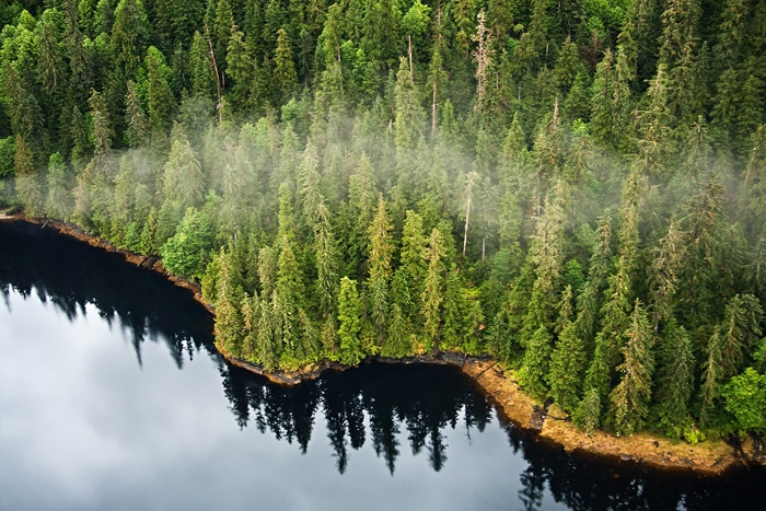 Tongass National Forest Ariel Photo