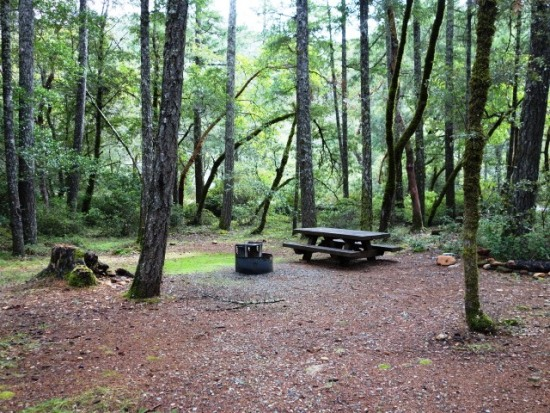 Grassy Flat Campground site 6 features a picnic table, fire ring, and tent pad shaded by trees.