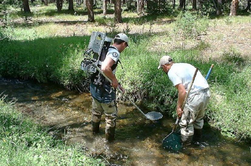 fish biologist - Wildlife Biologist Job Description