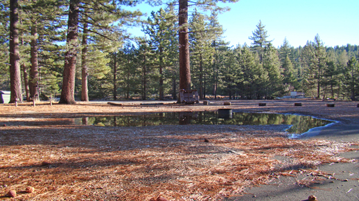 Color photo of a new small infiltration basin in the campground at Meeks Bay Resort.