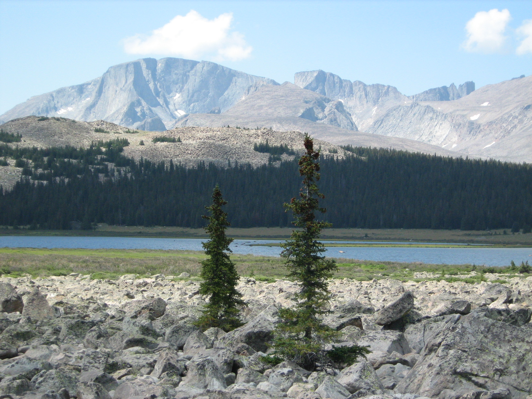 Photo showing Cloud Peak in the background