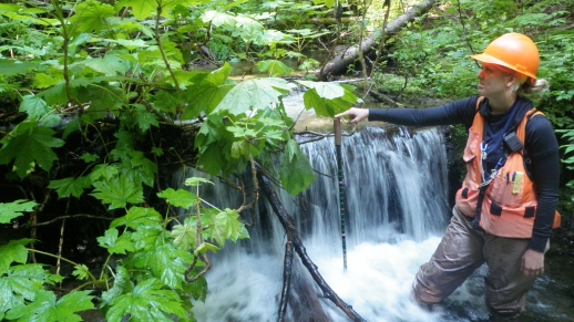 Photo: Biological Technician (Fisheries) measuring pool depth during a stream survey.
