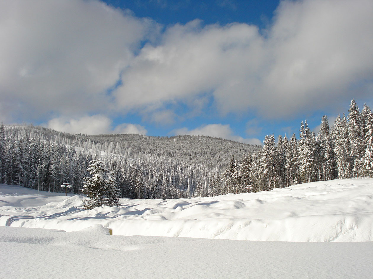 A blanket of sparkly white snow covers trees and mountains at the Lolo Pass Visitor Center