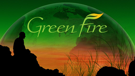 Green Fire: A silhouette image of a man sitting on a cliff.