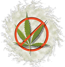 Stop Illegal Marijuana Cultivation