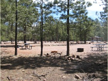 Woods Canyon Group Campground image 1