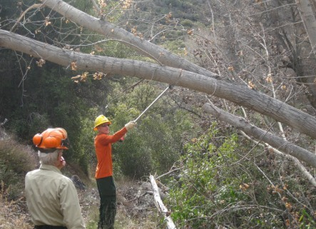 [Photograph]:  Volunteers and Forest Service workers are clearing brush, trees and rocks brought do