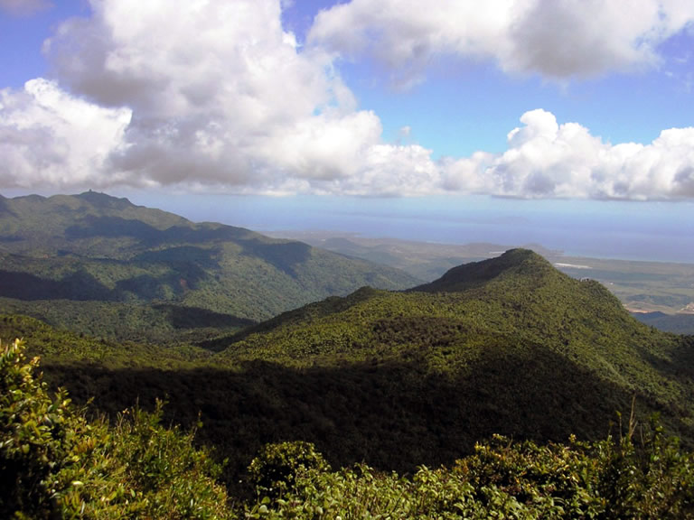 El Yunque National Forest Scenic View