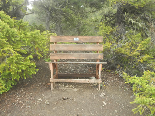 Bench along Deer Ridge Trail.