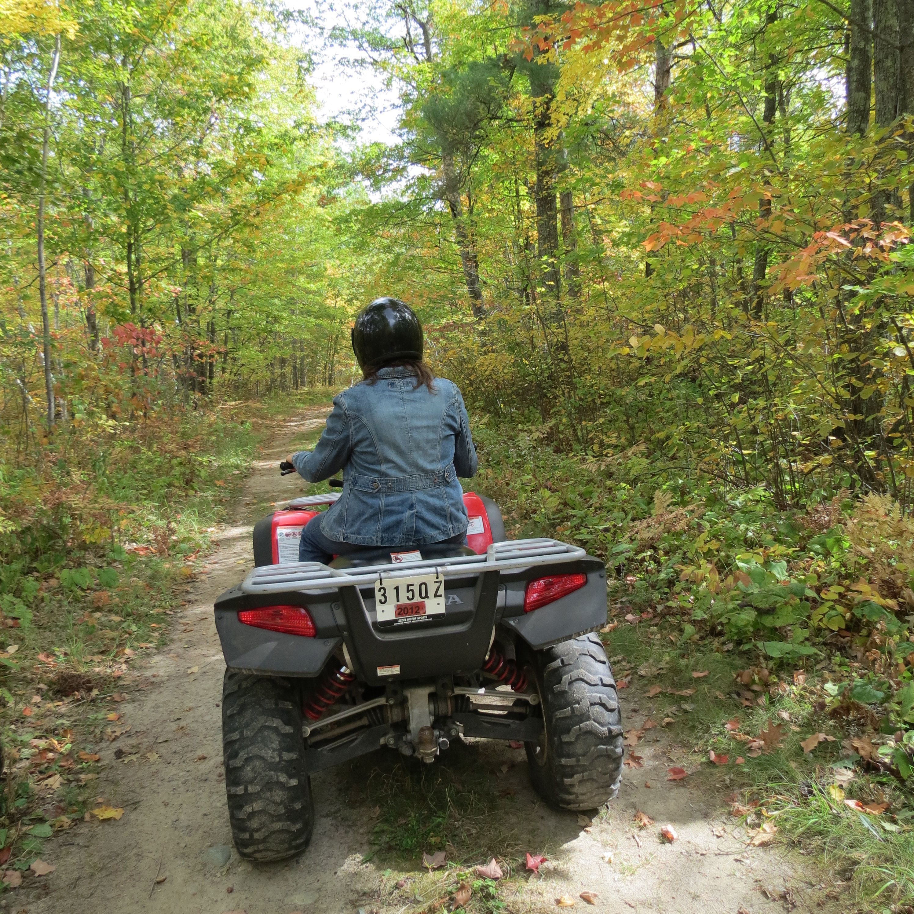 PErson riding a 4-wheeler on the Forest
