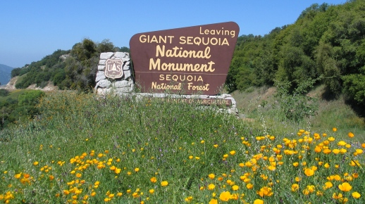Leaving the Giant Sequoia National Monument sign along highway 180