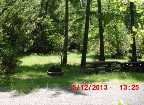 A campsite with a picnic table and fire ring shaded by trees in Big Flat Campground.