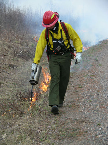 CNNF Firefighter using drip torch on a  prescribed burn