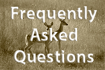 Hunting Frequently Asked Questions