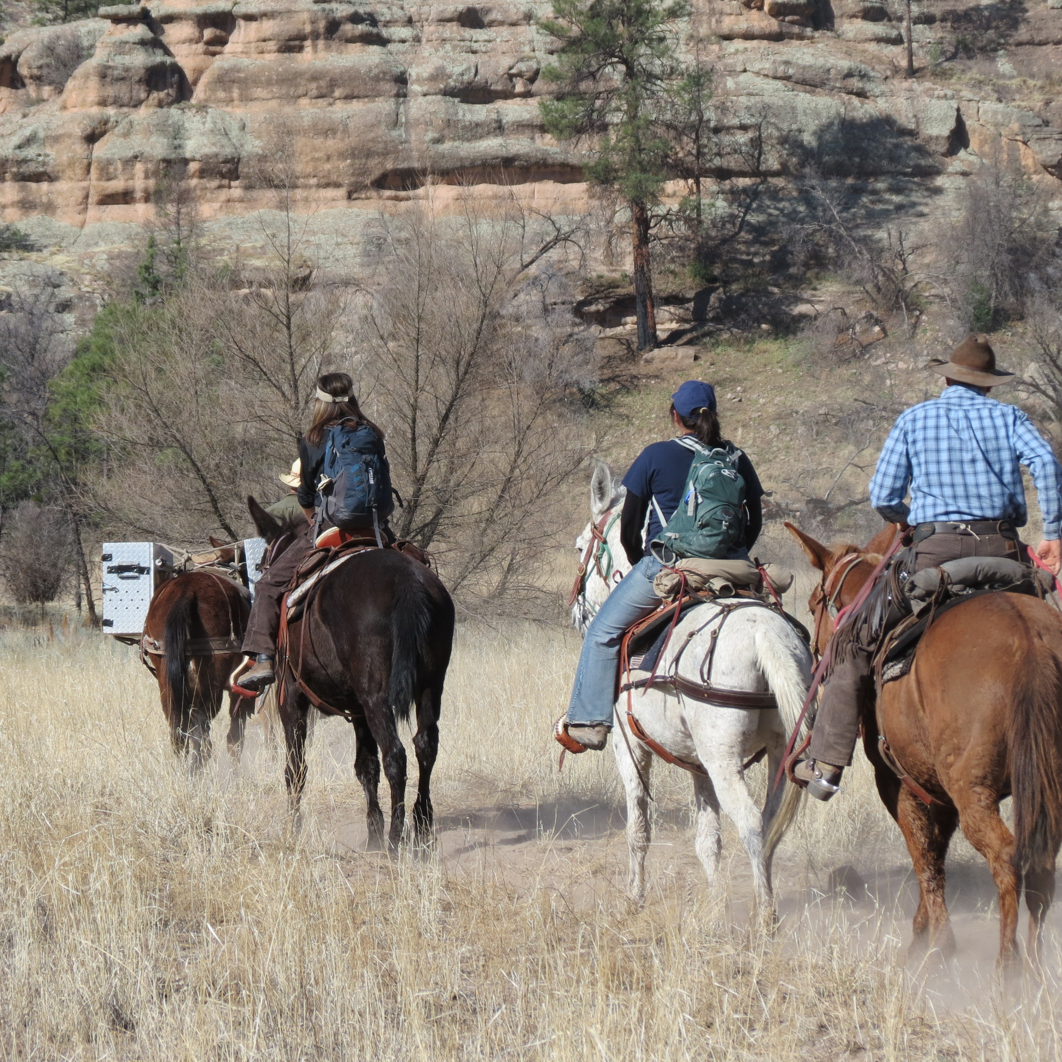 A group on horseback travel into the wilderness with a hired guide.