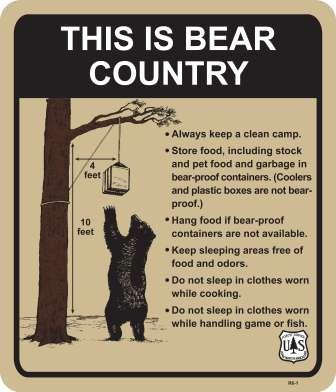 Poster shows ideas on how to be bear aware