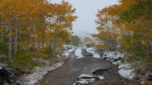 First Snow and Fall Colors on Bishop Creek Road