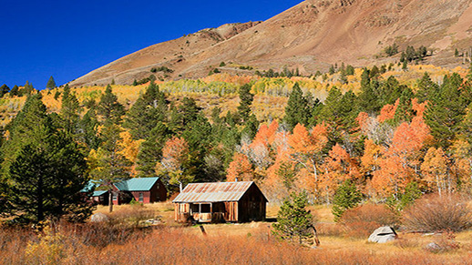 A cabin in Hope Valley with gold and orange aspens in the background.