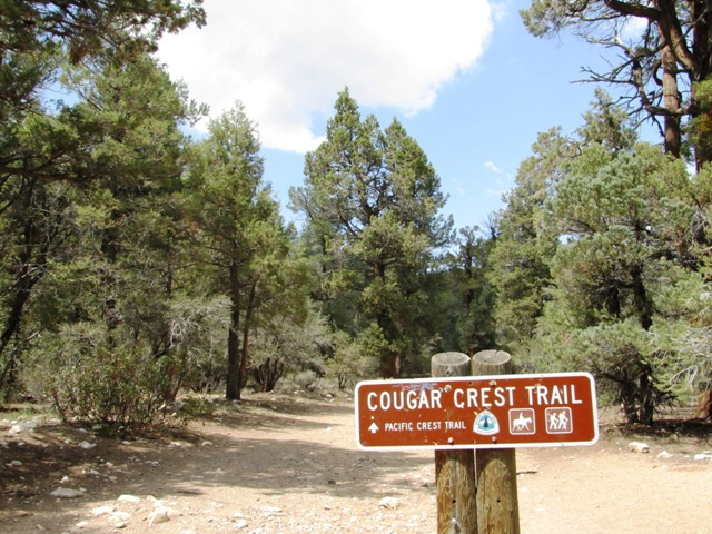 This is the trailhead for the Cougar Crest Trail north of Big Bear Lake