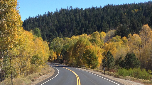 Highway 267 blazes with fall color.