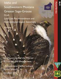 Sage Grouse Cover