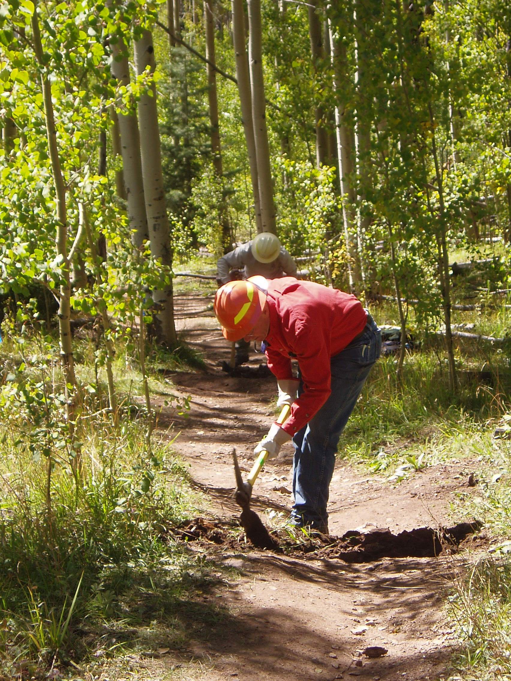 Erosion control on the Big T. Trail