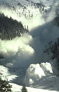 Idaho Avalanche Safety Links