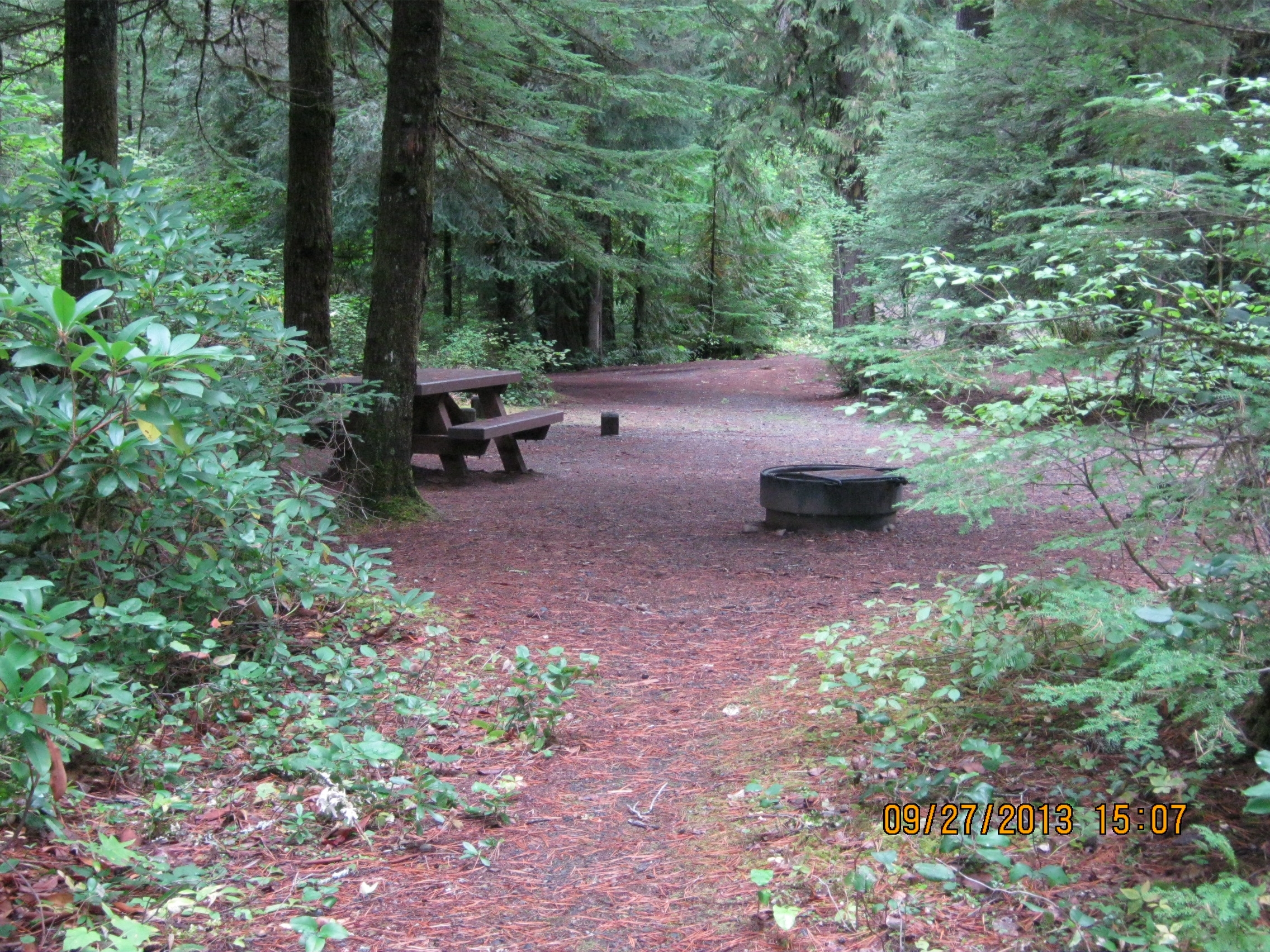 Camp Comfort Campground Umpqua National Forest