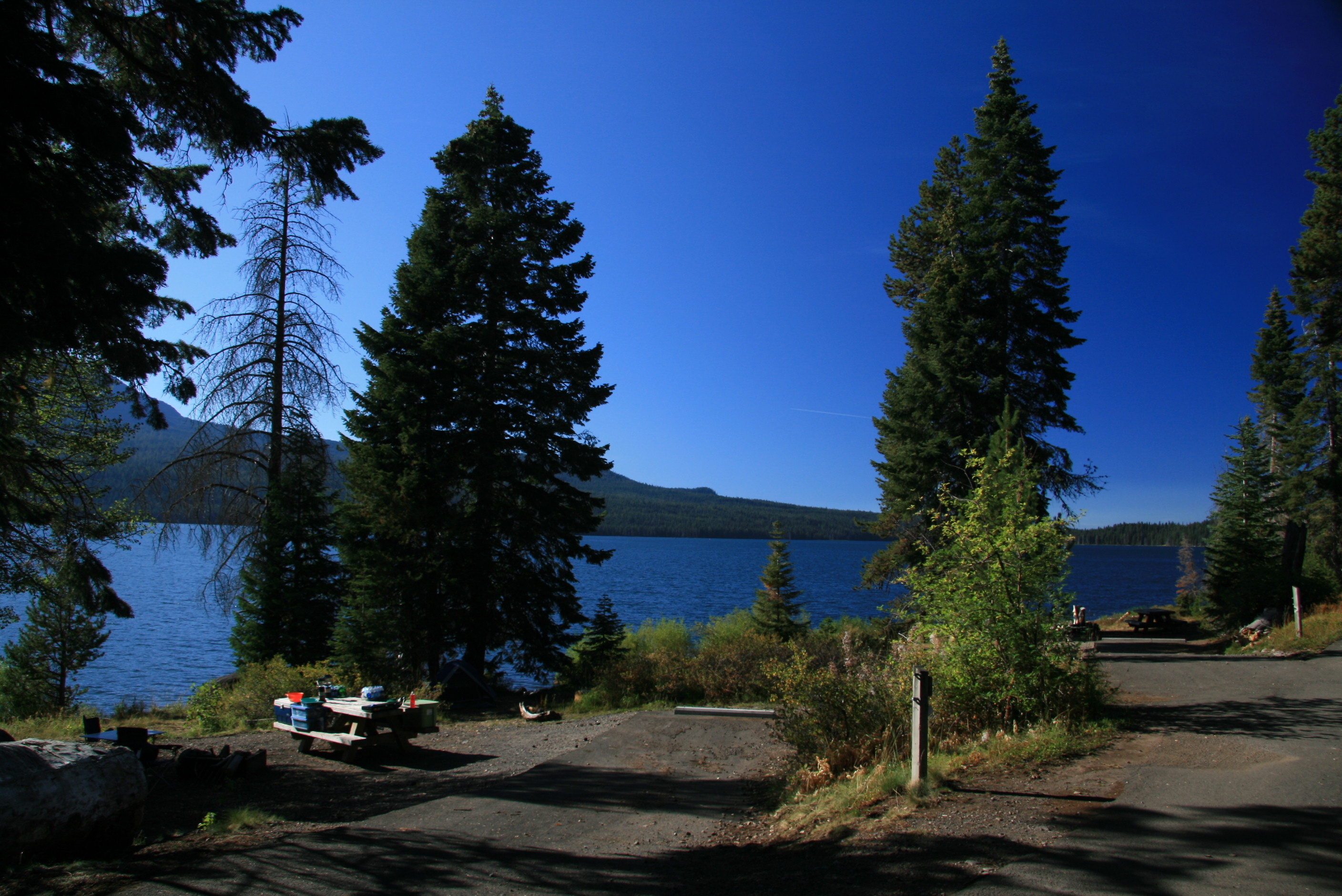 Diamond Lake Campsites Umpqua National Forest
