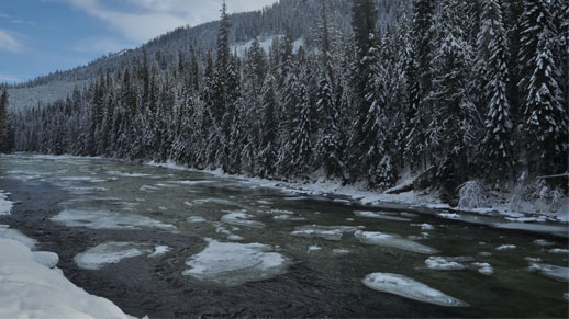 Snowbanks line the icy waters of the Lochsa River.