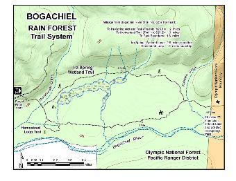 Bogachiel Rain Forest Trail System Map