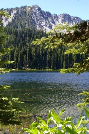High mountain lake surrounded by fir trees