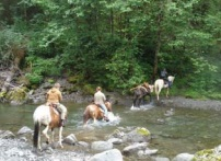 Stock users crossing the Humptuplips River