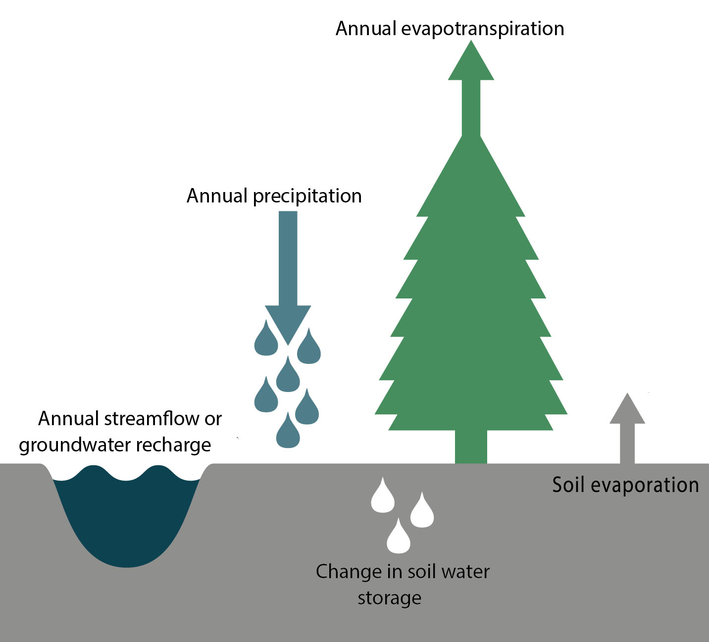 Elements of the annual water balance: Annual streamflow or groundwater recharge, annual precipitation, annual evapotranspiration, soil evaporation, change in soil water storage