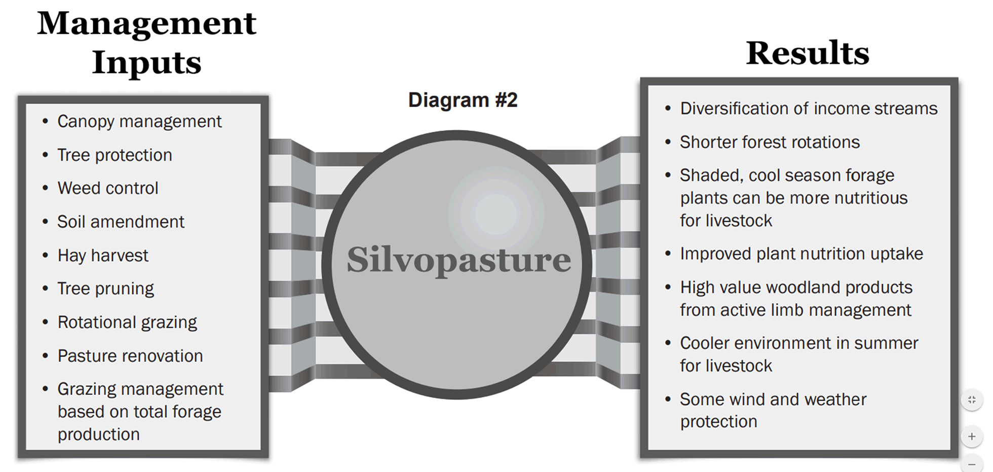 Silvopasture diagram showing management inputs on the left and results on the right.