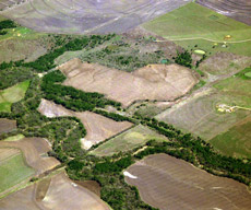 an aerial image of riparian forest buffers