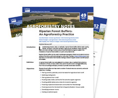 Agroforestry Notes icon