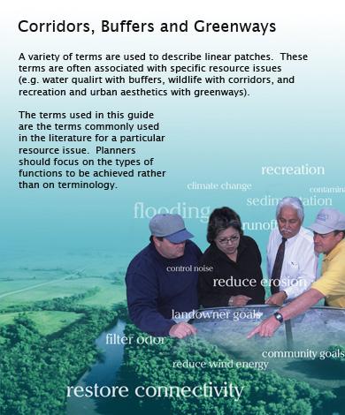 Landscape Design Concepts