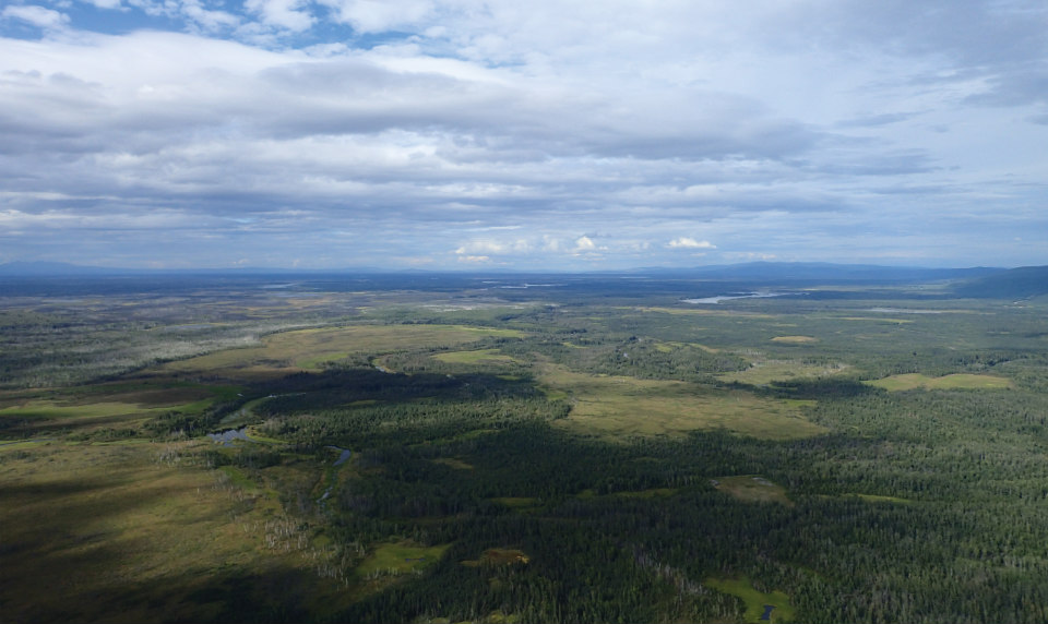 An aerial view of some 115 million acres of boreal forest in interior Alaska. USDA Forest Service photo.