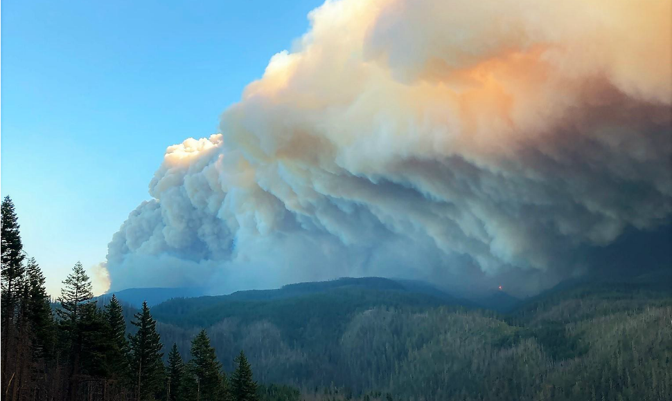 A large smoke plume from the Riverside Fire rises on Mount Hood National Forest, September 2020.