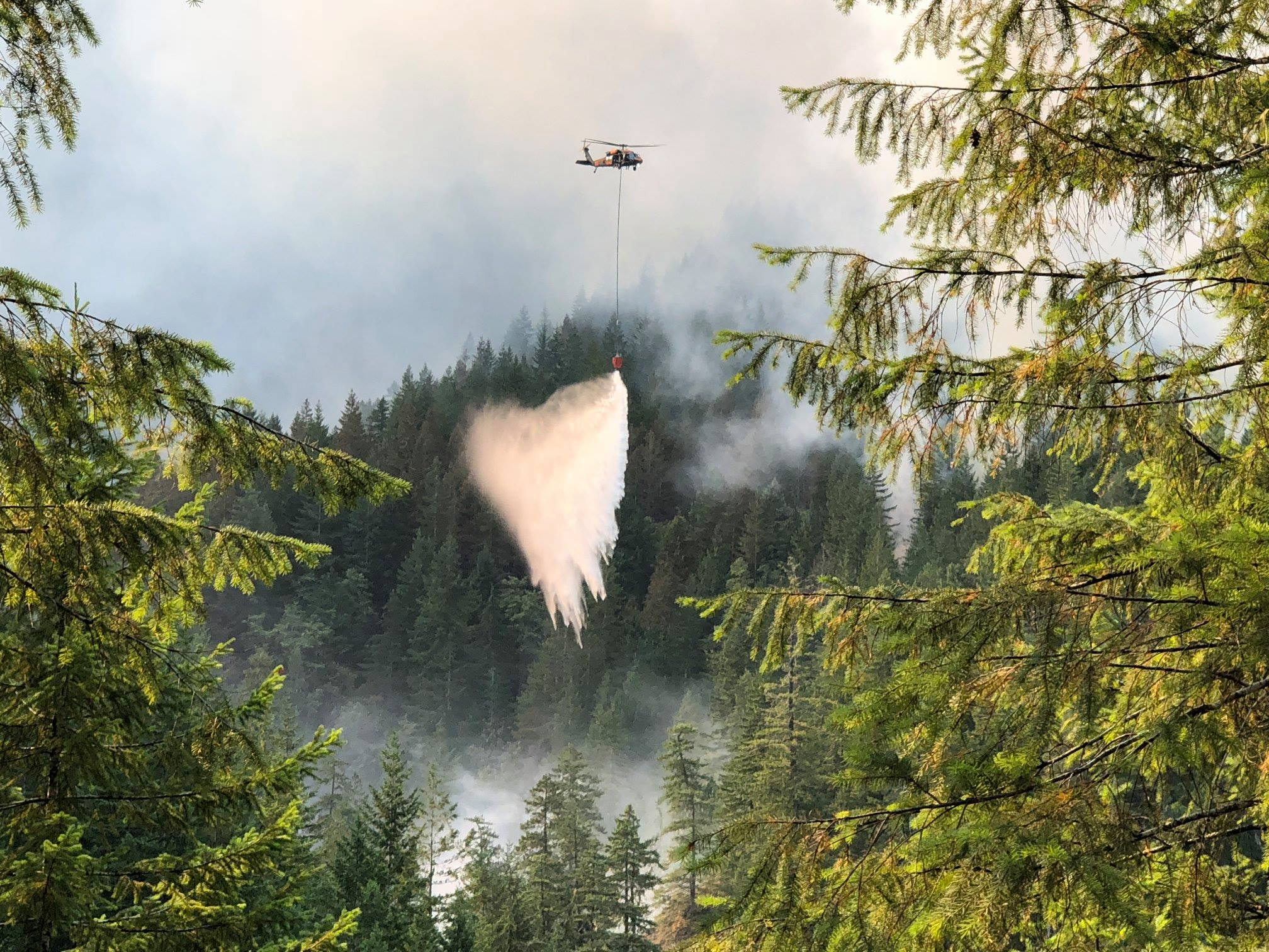 Helicopter dropping water on the Maple Fire in the Olympic National Forest.