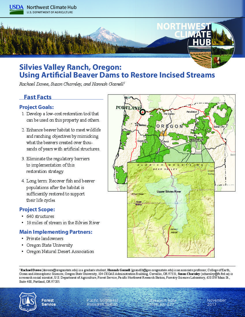 Silvies Valley Ranch, OR: using artificial beaver dams to restore incised streams