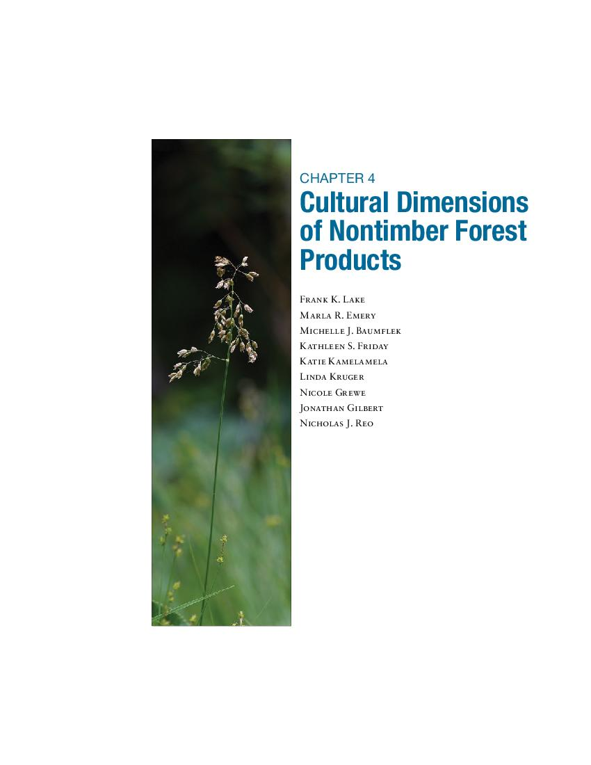 Chapter 4 - Cultural dimensions of nontimber products