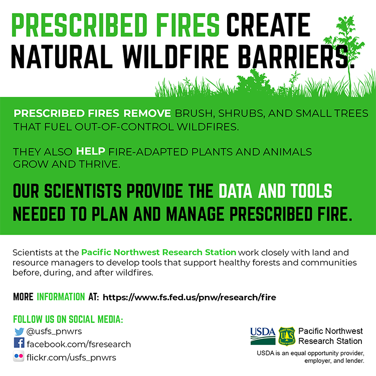 Back of prescribed fire infographic.