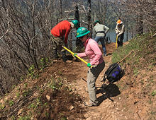 Trained volunteers with Trailkeepers of Oregon work to restore a trail in the Columbia River Gorge National Scenic Area that was damaged by the 2017 Eagle Creek Fire. : Photo courtesy of Trailkeepers of Oregon.