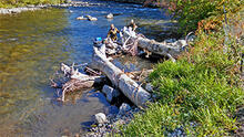 Researchers record pool depth, water temperature, and velocity in the Entiat River, Washington.