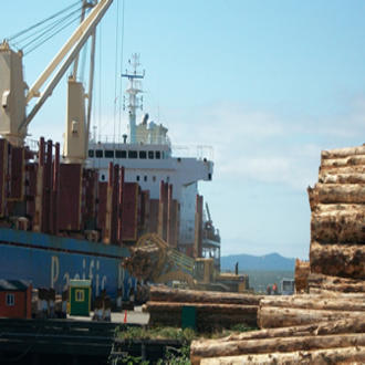 Logs are loaded onto a ship for export. Researchers linked computer models with dynamic ecological and economic features to project the effects of climate change on the global forestry sector.